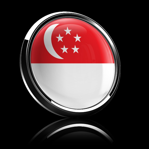 Magnetic Car Grille Dome Badge Flag Singapore