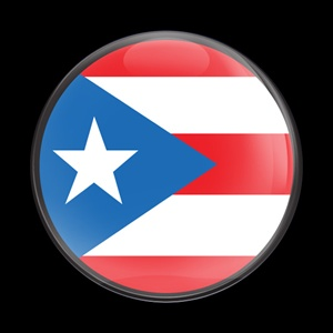 Magnetic Car Grille Dome Badge Flag Puerto Rico