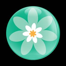 Magnetic Car Grille Dome Badge-Flower 04