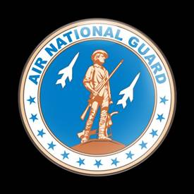 Magnetic Car Grille Dome Badge-Military US Air National Guard