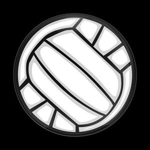 Magnetic Car Grille Dome Badge-Sports Volleyball