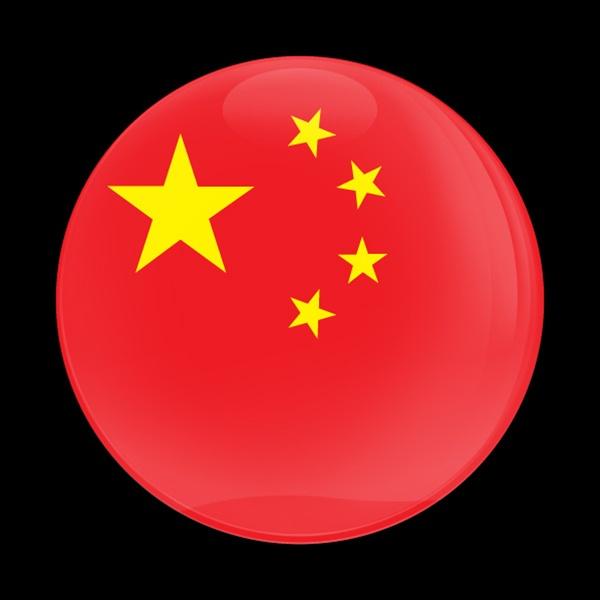 Dome Badge Flag China