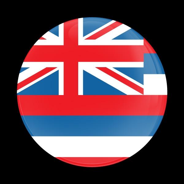 Dome Badge-Flag Hawaii