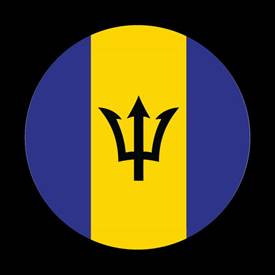 Magnetic Car Grille Dome Badge-Flag Barbados