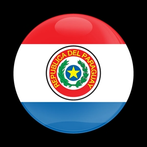 Dome Badge Flag Paraguay